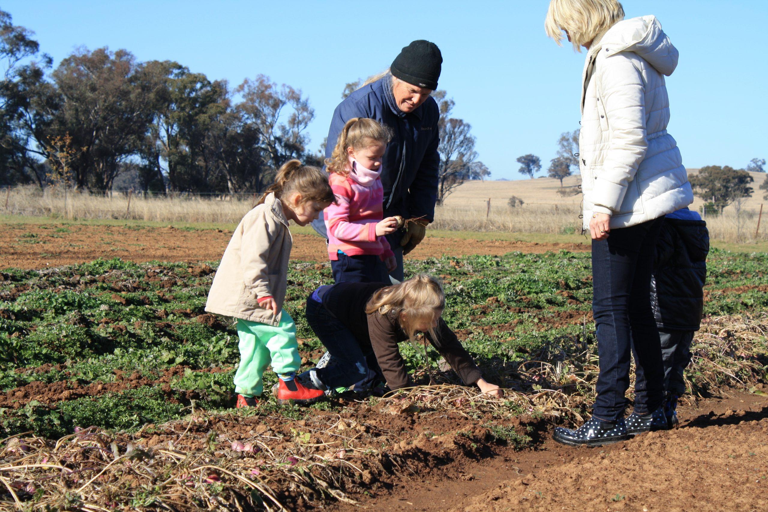 Farm Walks - Kids