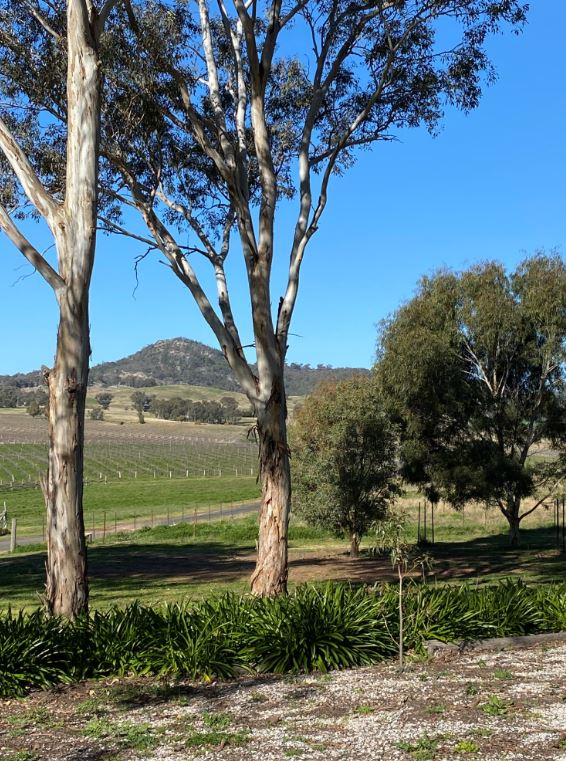 Lazy Oak Mudgee