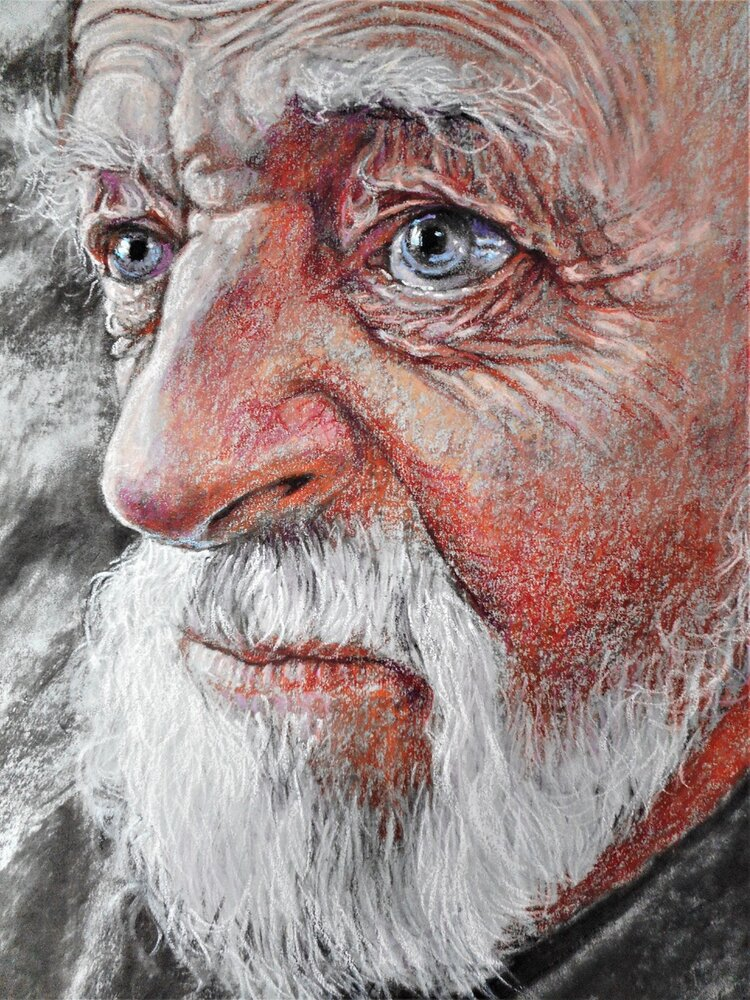 Portraits in Pastel - David Newman White